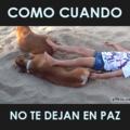 Perro thug life