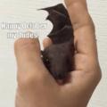 Batman teve um filho móssexual
