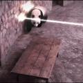 Panda irão dominar o mundo... Trump é um panda disfarçado.
