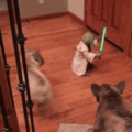 Yoda stands against furries