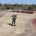 narcoleptic skater