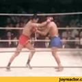Why I love Muay Thai