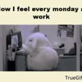 Como eu caio no trabalho nas segundas Feiras | Traducao by Jureg