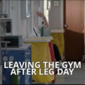 Today was leg day