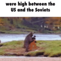 The cold war in a nutshell