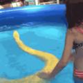 snek swims with girl