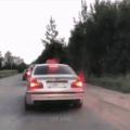 Vladimir o espalha lixo