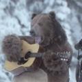 Petit ours brun 15 ans après