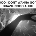 tunnel to brazil