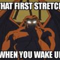 First morning stretch