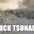 Duck tsunami
