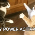PUSSY POWER ACTIVATED!!!